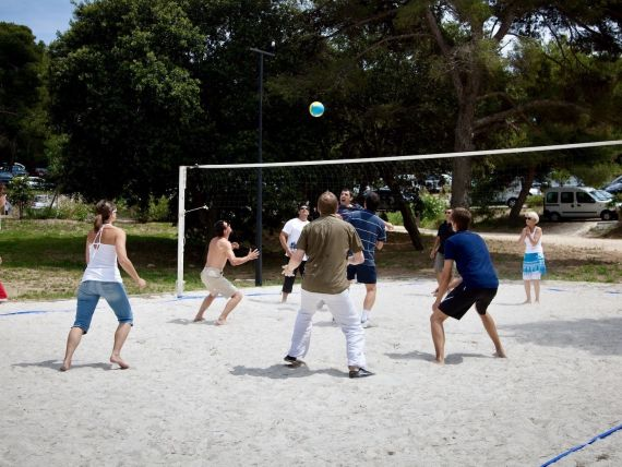 Olympiades-team-building-sportif-equipe-tournoi-volley-collaborateurs
